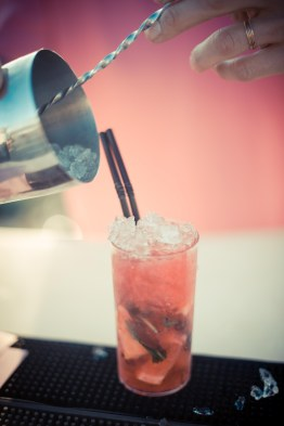 GAUCHO_PINK_BAR-65