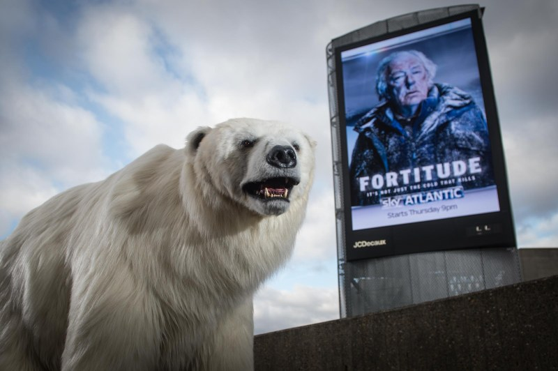 Bear & Digital Billboard