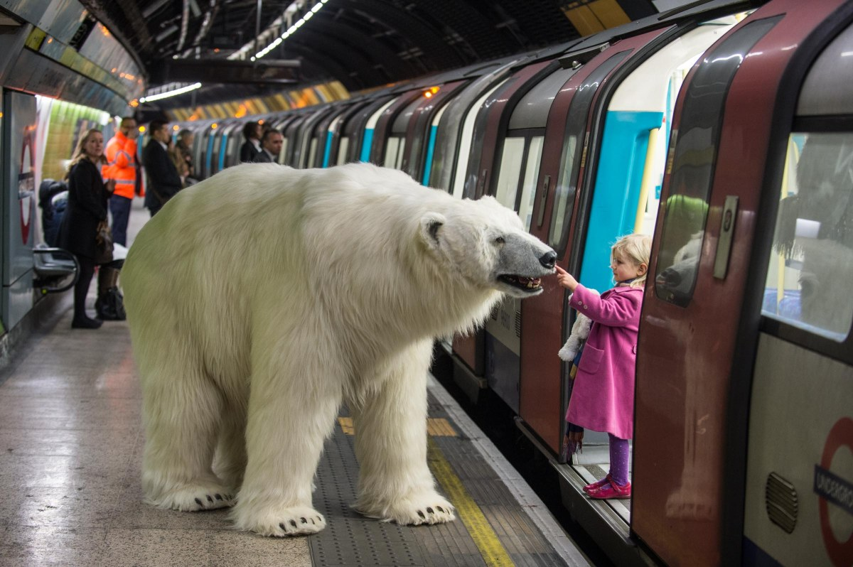 Fortitude: Polar Bear in London